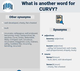 curvy, synonym curvy, another word for curvy, words like curvy, thesaurus curvy