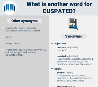 cuspated, synonym cuspated, another word for cuspated, words like cuspated, thesaurus cuspated