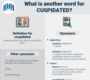 cuspidated, synonym cuspidated, another word for cuspidated, words like cuspidated, thesaurus cuspidated