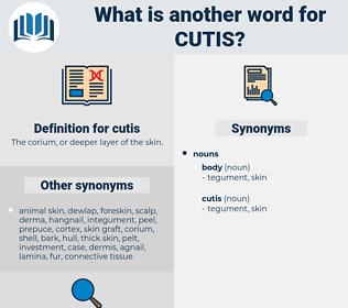 cutis, synonym cutis, another word for cutis, words like cutis, thesaurus cutis