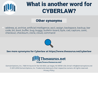 cyberlaw, synonym cyberlaw, another word for cyberlaw, words like cyberlaw, thesaurus cyberlaw