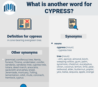 cypress, synonym cypress, another word for cypress, words like cypress, thesaurus cypress