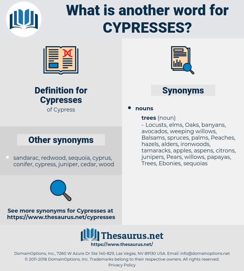 Cypresses, synonym Cypresses, another word for Cypresses, words like Cypresses, thesaurus Cypresses