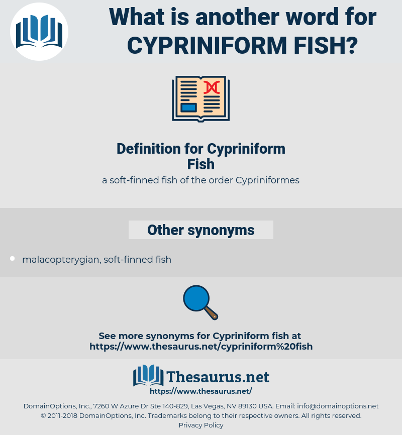 Cypriniform Fish, synonym Cypriniform Fish, another word for Cypriniform Fish, words like Cypriniform Fish, thesaurus Cypriniform Fish