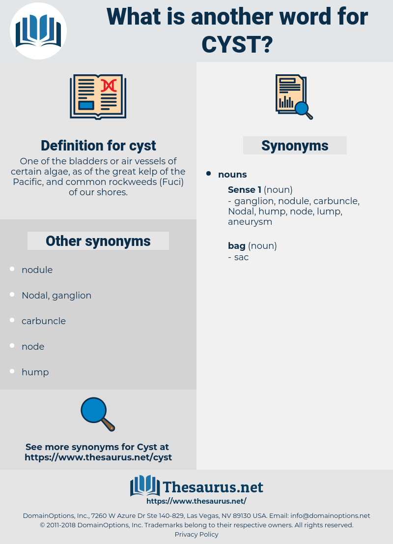 cyst, synonym cyst, another word for cyst, words like cyst, thesaurus cyst
