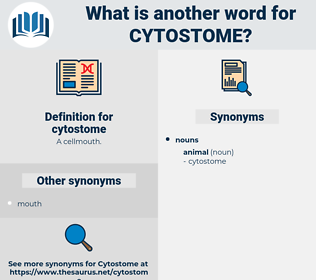 cytostome, synonym cytostome, another word for cytostome, words like cytostome, thesaurus cytostome