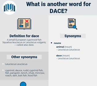 dace, synonym dace, another word for dace, words like dace, thesaurus dace
