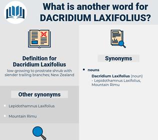 Dacridium Laxifolius, synonym Dacridium Laxifolius, another word for Dacridium Laxifolius, words like Dacridium Laxifolius, thesaurus Dacridium Laxifolius