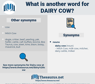 dairy cow, synonym dairy cow, another word for dairy cow, words like dairy cow, thesaurus dairy cow