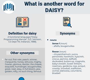 daisy, synonym daisy, another word for daisy, words like daisy, thesaurus daisy