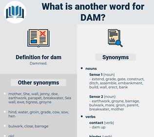 dam, synonym dam, another word for dam, words like dam, thesaurus dam