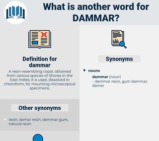 dammar, synonym dammar, another word for dammar, words like dammar, thesaurus dammar