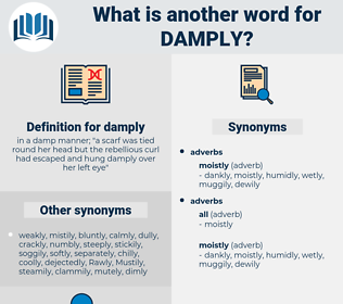 damply, synonym damply, another word for damply, words like damply, thesaurus damply