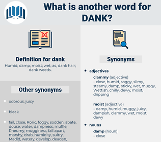 dank, synonym dank, another word for dank, words like dank, thesaurus dank