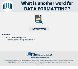 data formatting, synonym data formatting, another word for data formatting, words like data formatting, thesaurus data formatting