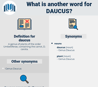 daucus, synonym daucus, another word for daucus, words like daucus, thesaurus daucus