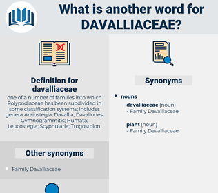 davalliaceae, synonym davalliaceae, another word for davalliaceae, words like davalliaceae, thesaurus davalliaceae