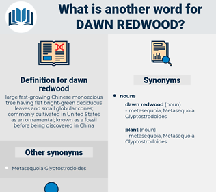 dawn redwood, synonym dawn redwood, another word for dawn redwood, words like dawn redwood, thesaurus dawn redwood