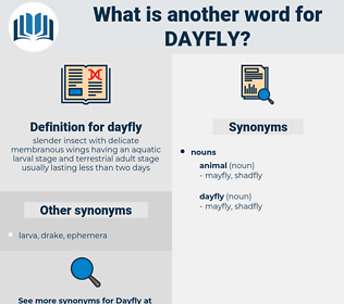 dayfly, synonym dayfly, another word for dayfly, words like dayfly, thesaurus dayfly