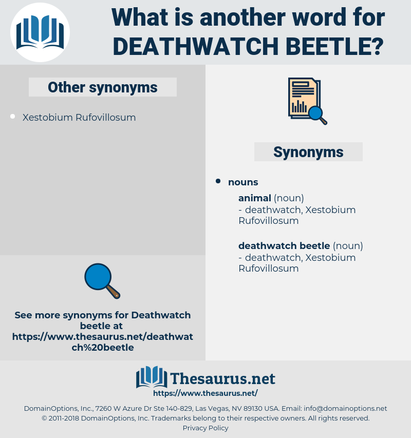 deathwatch beetle, synonym deathwatch beetle, another word for deathwatch beetle, words like deathwatch beetle, thesaurus deathwatch beetle