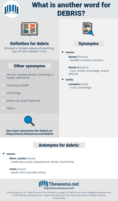 debris, synonym debris, another word for debris, words like debris, thesaurus debris