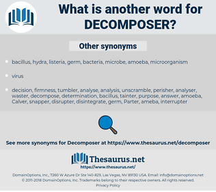 decomposer, synonym decomposer, another word for decomposer, words like decomposer, thesaurus decomposer