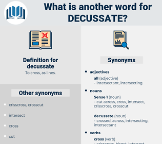 decussate, synonym decussate, another word for decussate, words like decussate, thesaurus decussate
