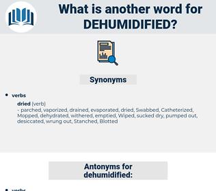 dehumidified, synonym dehumidified, another word for dehumidified, words like dehumidified, thesaurus dehumidified
