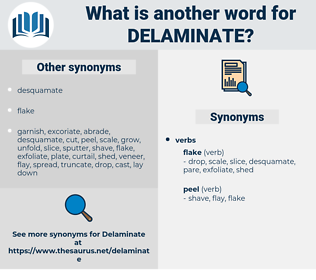 delaminate, synonym delaminate, another word for delaminate, words like delaminate, thesaurus delaminate