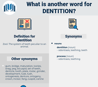 dentition, synonym dentition, another word for dentition, words like dentition, thesaurus dentition