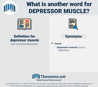 depressor muscle, synonym depressor muscle, another word for depressor muscle, words like depressor muscle, thesaurus depressor muscle