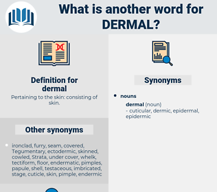 dermal, synonym dermal, another word for dermal, words like dermal, thesaurus dermal