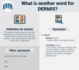 dermis, synonym dermis, another word for dermis, words like dermis, thesaurus dermis