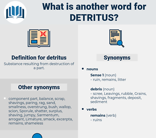 detritus, synonym detritus, another word for detritus, words like detritus, thesaurus detritus