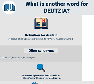 deutzia, synonym deutzia, another word for deutzia, words like deutzia, thesaurus deutzia