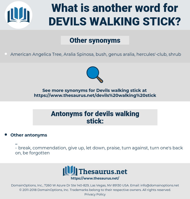 devils walking stick, synonym devils walking stick, another word for devils walking stick, words like devils walking stick, thesaurus devils walking stick