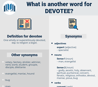 devotee, synonym devotee, another word for devotee, words like devotee, thesaurus devotee