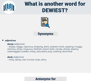 dewiest, synonym dewiest, another word for dewiest, words like dewiest, thesaurus dewiest