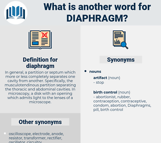 diaphragm, synonym diaphragm, another word for diaphragm, words like diaphragm, thesaurus diaphragm