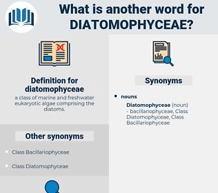 diatomophyceae, synonym diatomophyceae, another word for diatomophyceae, words like diatomophyceae, thesaurus diatomophyceae