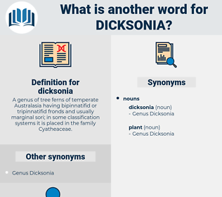 dicksonia, synonym dicksonia, another word for dicksonia, words like dicksonia, thesaurus dicksonia