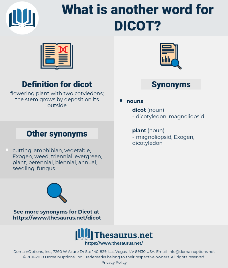 dicot, synonym dicot, another word for dicot, words like dicot, thesaurus dicot