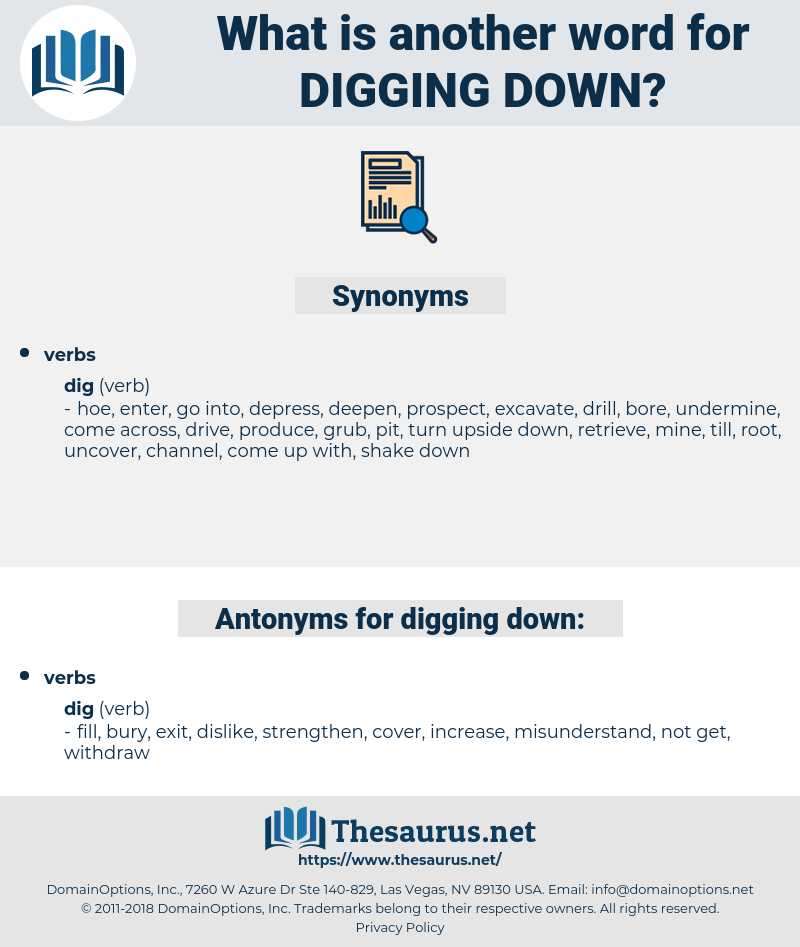 digging down, synonym digging down, another word for digging down, words like digging down, thesaurus digging down