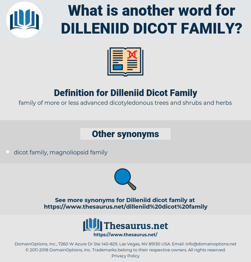 Dilleniid Dicot Family, synonym Dilleniid Dicot Family, another word for Dilleniid Dicot Family, words like Dilleniid Dicot Family, thesaurus Dilleniid Dicot Family