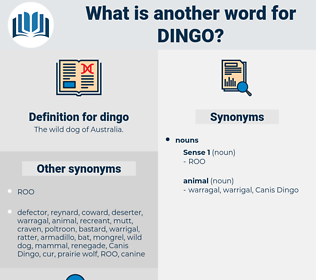 dingo, synonym dingo, another word for dingo, words like dingo, thesaurus dingo