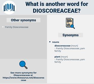 dioscoreaceae, synonym dioscoreaceae, another word for dioscoreaceae, words like dioscoreaceae, thesaurus dioscoreaceae
