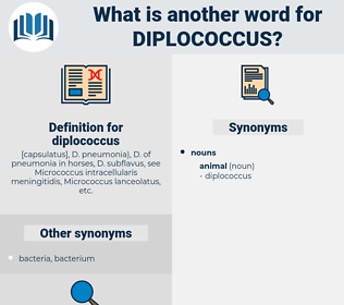 diplococcus, synonym diplococcus, another word for diplococcus, words like diplococcus, thesaurus diplococcus