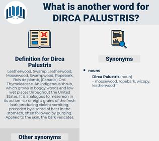 Dirca Palustris, synonym Dirca Palustris, another word for Dirca Palustris, words like Dirca Palustris, thesaurus Dirca Palustris