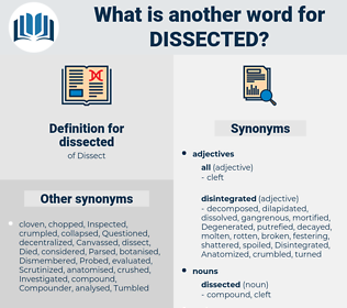 dissected, synonym dissected, another word for dissected, words like dissected, thesaurus dissected