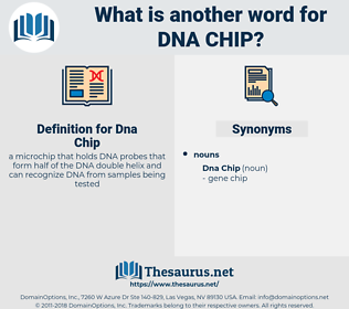 Dna Chip, synonym Dna Chip, another word for Dna Chip, words like Dna Chip, thesaurus Dna Chip